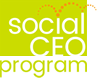 The Social CEO Program